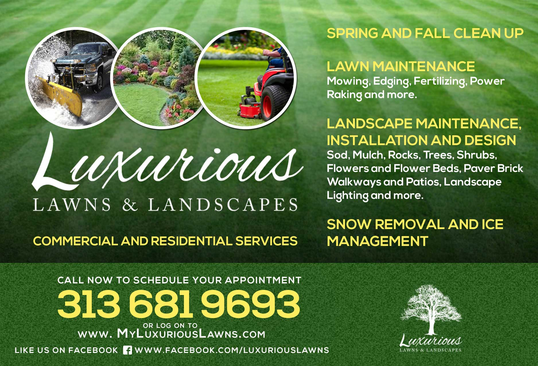 Luxurious Lawns and Landscapes Flyer